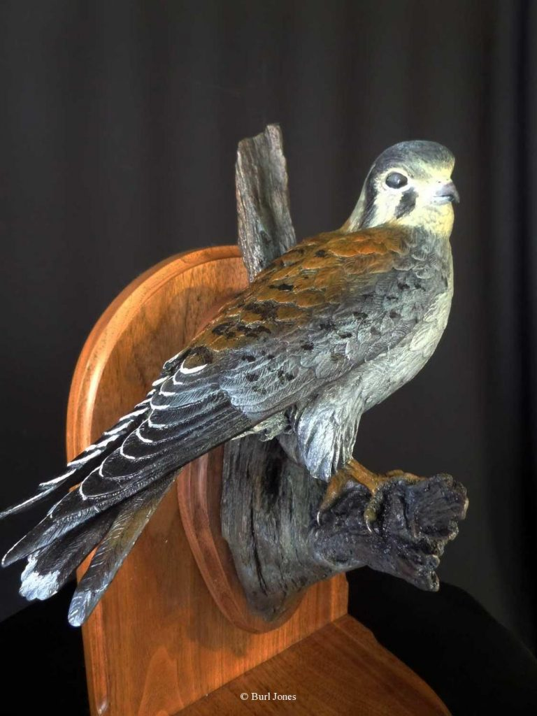 """Kestrel"" (Life Size)  Limited Edition 20   ""Kestrel"" - Birds  Bronze Sculpture of Birds and Fish"