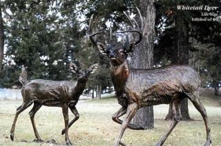 Life Size Whitetail Deer Life Size Whitetail Deer  Monumental Sculpture  Lifesize Sculpture