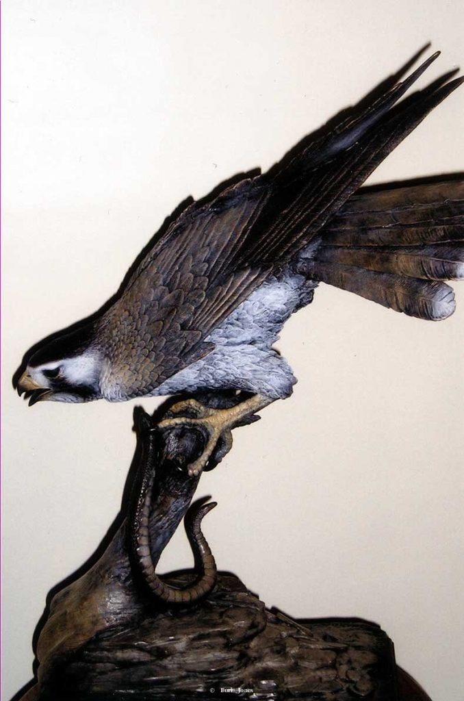 """Serpendine""<br>Praire Falcon with or without snake<br>Life Size - Edition of 50 ""Serpendine"" - Birds  Bronze Sculpture of Birds and Fish"