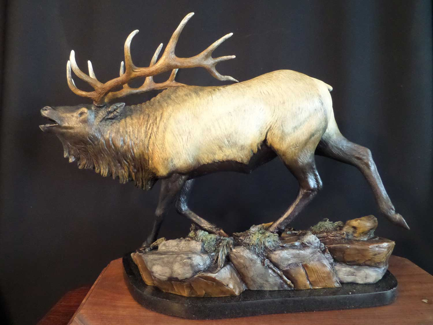 """Mountain Music"" - Bull Elk 15"" T 13"" L 10 "" W Edition 20 Bronze Sculpture by Burl Jones"